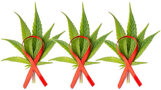 Marijuana and HIV