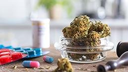 Marijuana or Opioids