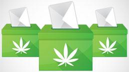 Marijuana Ballot Measures